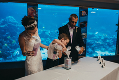 Gulfarium wedding, Destin wedding Officiant, Fort Walton Beach Officiant